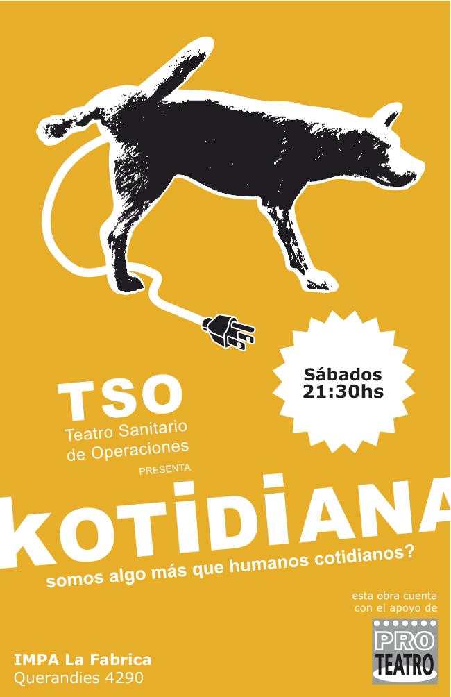 AF_Kotidiana